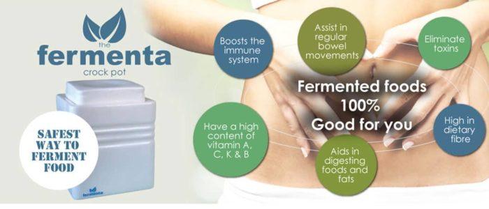 fermenta fermentation crock pot